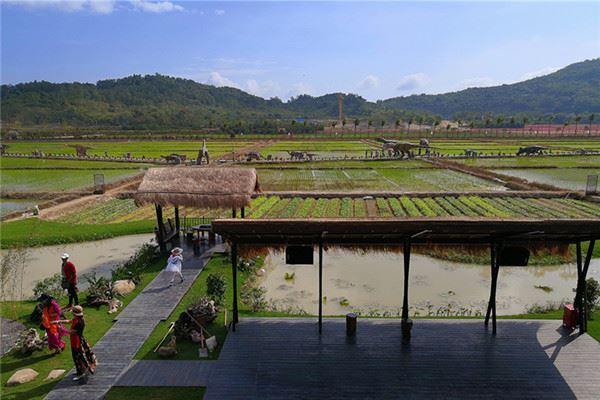 水稻国家公园是三亚市最大的农旅融合主题旅游区